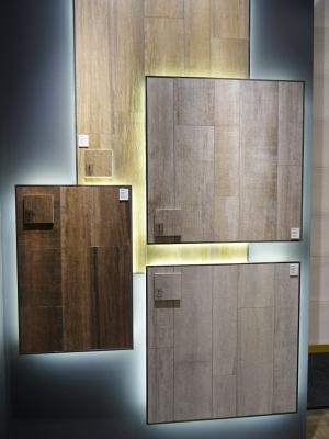 IMG#2 Lumber by Aleluia