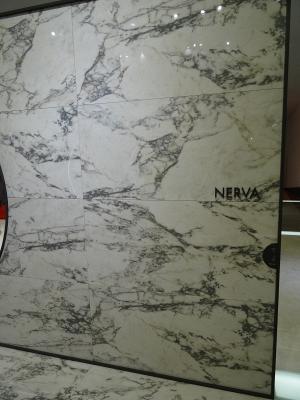 Nerva by Todagres