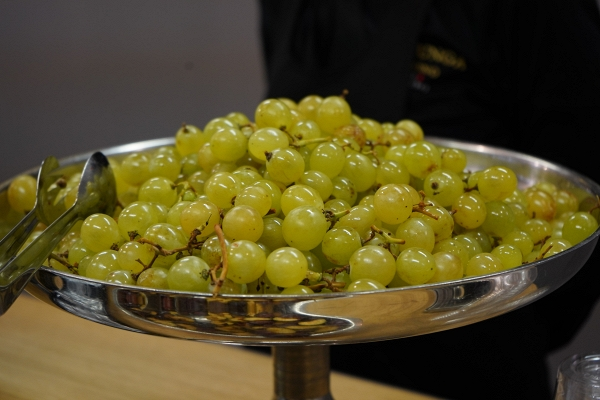 IMG#2 Del Conca by zXz A Glance at Appetizers at Cersaie Stands ;)