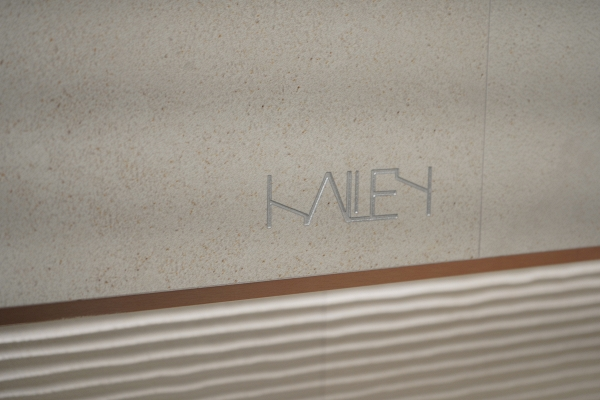 IMG#1 Halley by Venis
