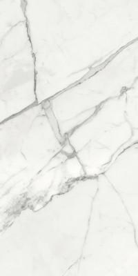 Ceramica Fondovalle Infinito 2.0 INF039_Infinito2.0MarbletechWhiteGlossy_120*240 , Séjour, Salle de bain, Cuisine, Espace public, Chambre à coucher, Effet effet pierre, style Style patchwork, style Style moderne, Grès cérame non-émaillé, revêtement mur et sol, Surface mate, Surface polie, Résistance au glissement R10, Bord rectifié, Grès cérame de faible épaisseur, Variation de nuances V2