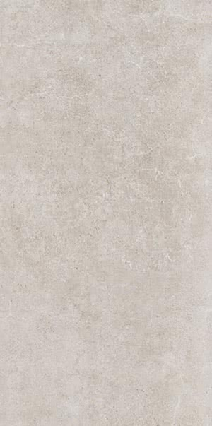 Revigres Nimbus 31002169C1_NimbusPlatinanat_30*60 , Bathroom, Kitchen, Patchwork style style, Concrete effect effect, 3D effect effect, Ceramic Tile, wall, Matte surface, Rectified edge, non-rectified edge, Shade variation V3