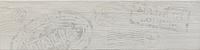 Ceramica Rondine Jungle S54166_JungleWhiteStampMix15*61 , Living room, Wood effect effect, PEI V, Glazed porcelain stoneware, wall & floor, Slip-resistance R10, non-rectified edge, Shade variation V2
